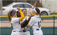 Softball Lions Play in Third Consecutive Semifinals