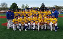 Lions Win League Baseball Championship